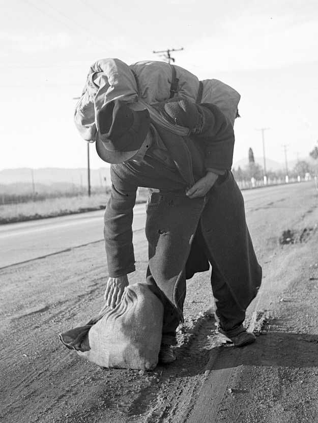 Napa Valley, California. More than twenty-five years a bindlestiff.   Photo: Dorothea Lange