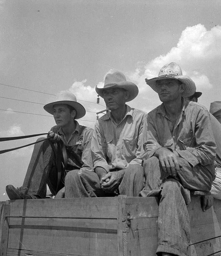 Arkansas sharecroppers going home from cotton fields near Bytheville, Arkansas Photo: Dorothea Lange