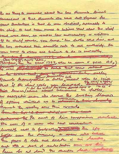 U of m pseo essay